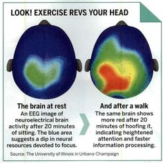 brain after exercise2
